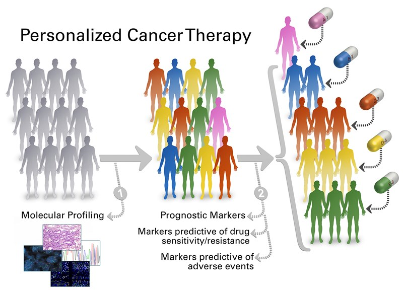 knowledge base for precision oncology